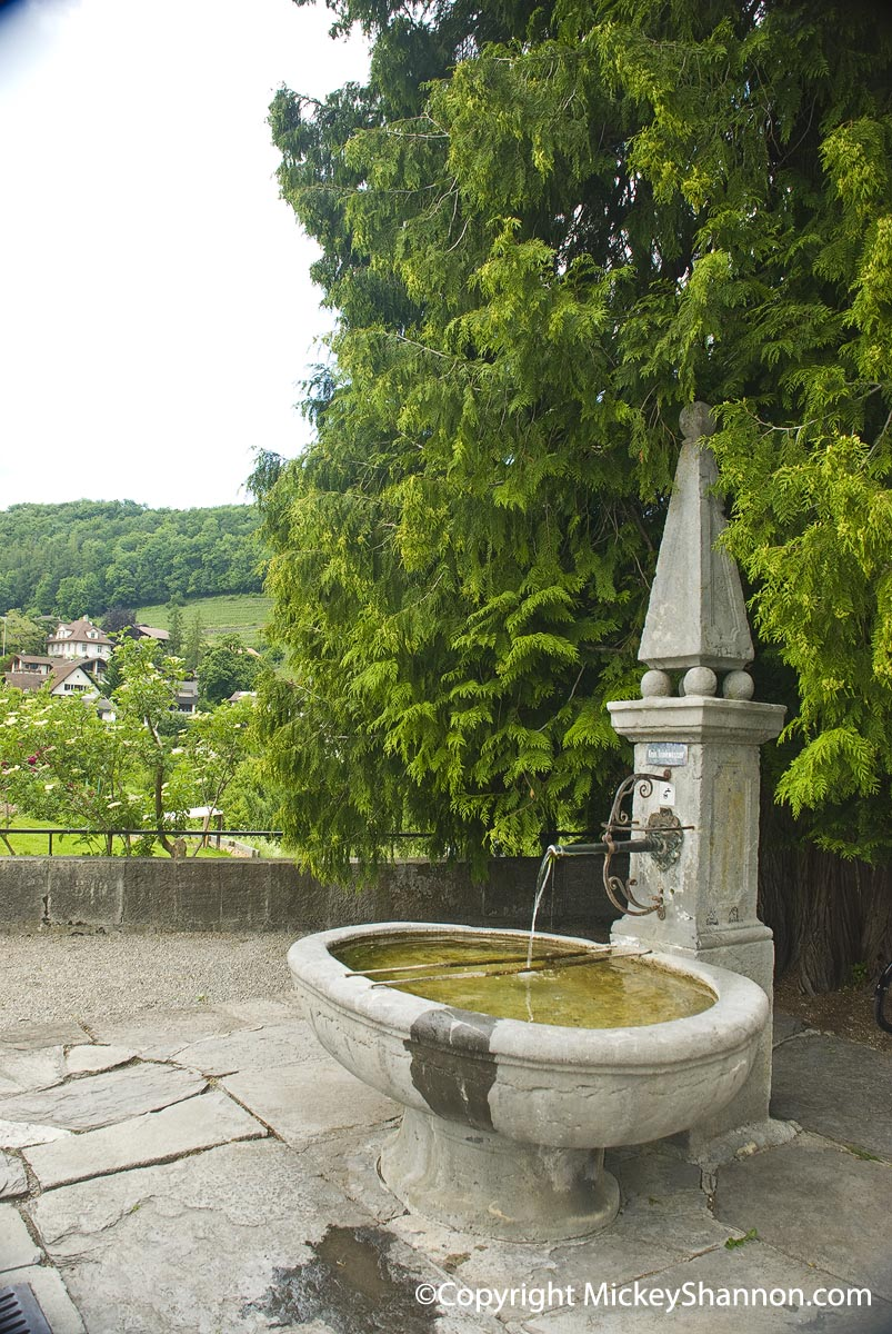 Spiez Castle Fountain