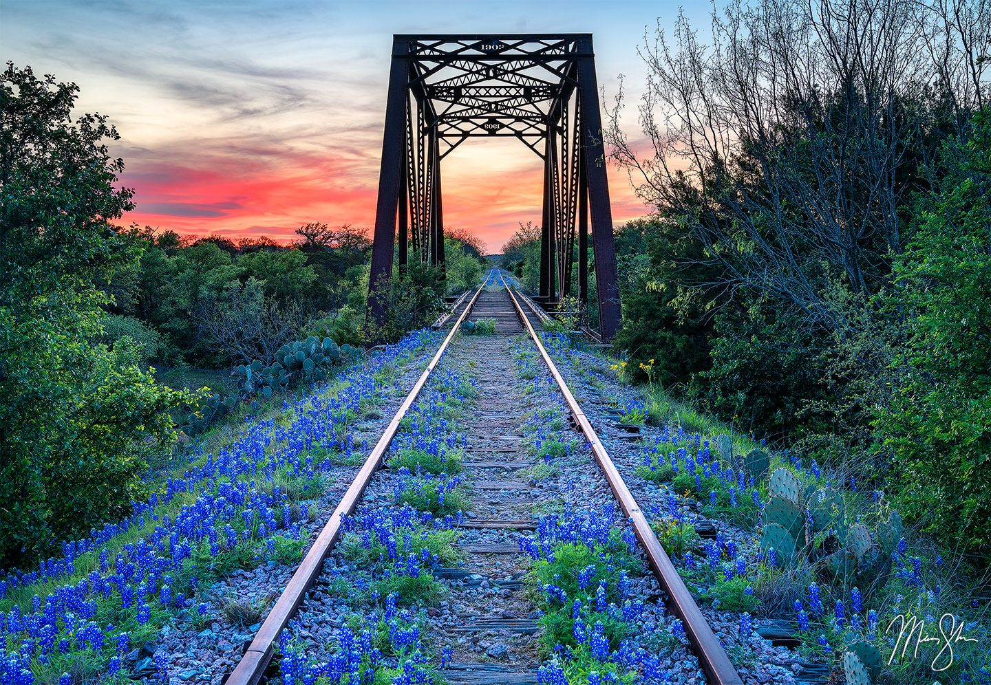 Texas photography: Bluebonnets, Ennis & the Texas Hill Country