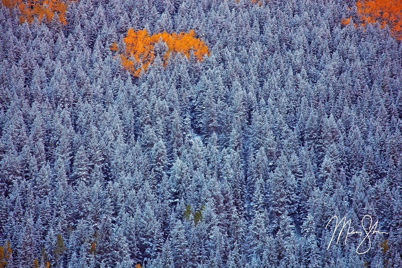 A Hint of Autumn - Maroon Bells, Aspen, Colorado