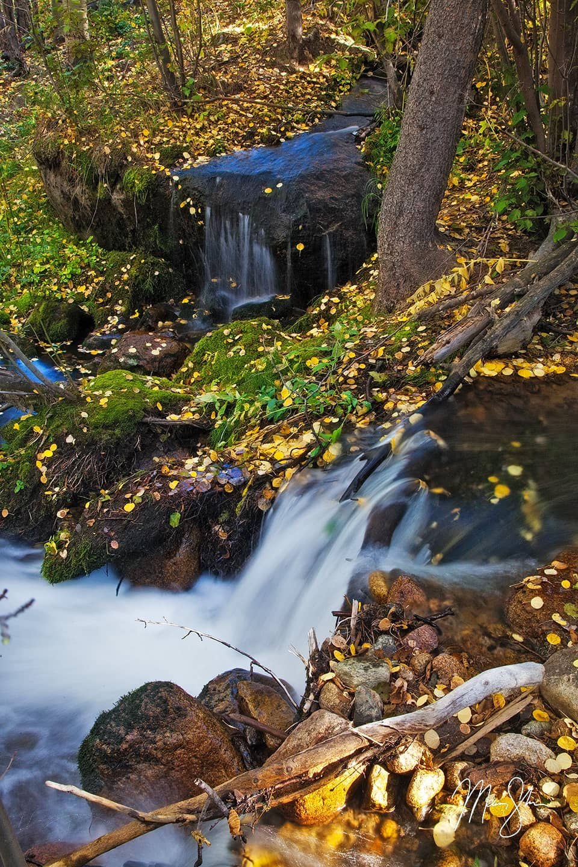 Autumn at Boulder Brook - Boulder Brook, Rocky Mountain National Park, Estes Park, Colorado