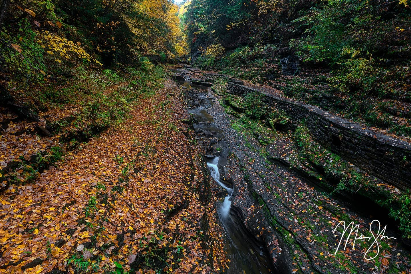 Open edition fine art print of Autumn at Watkins Glen State Park from Mickey Shannon Photography. Location: Watkins Glen State Park, NY