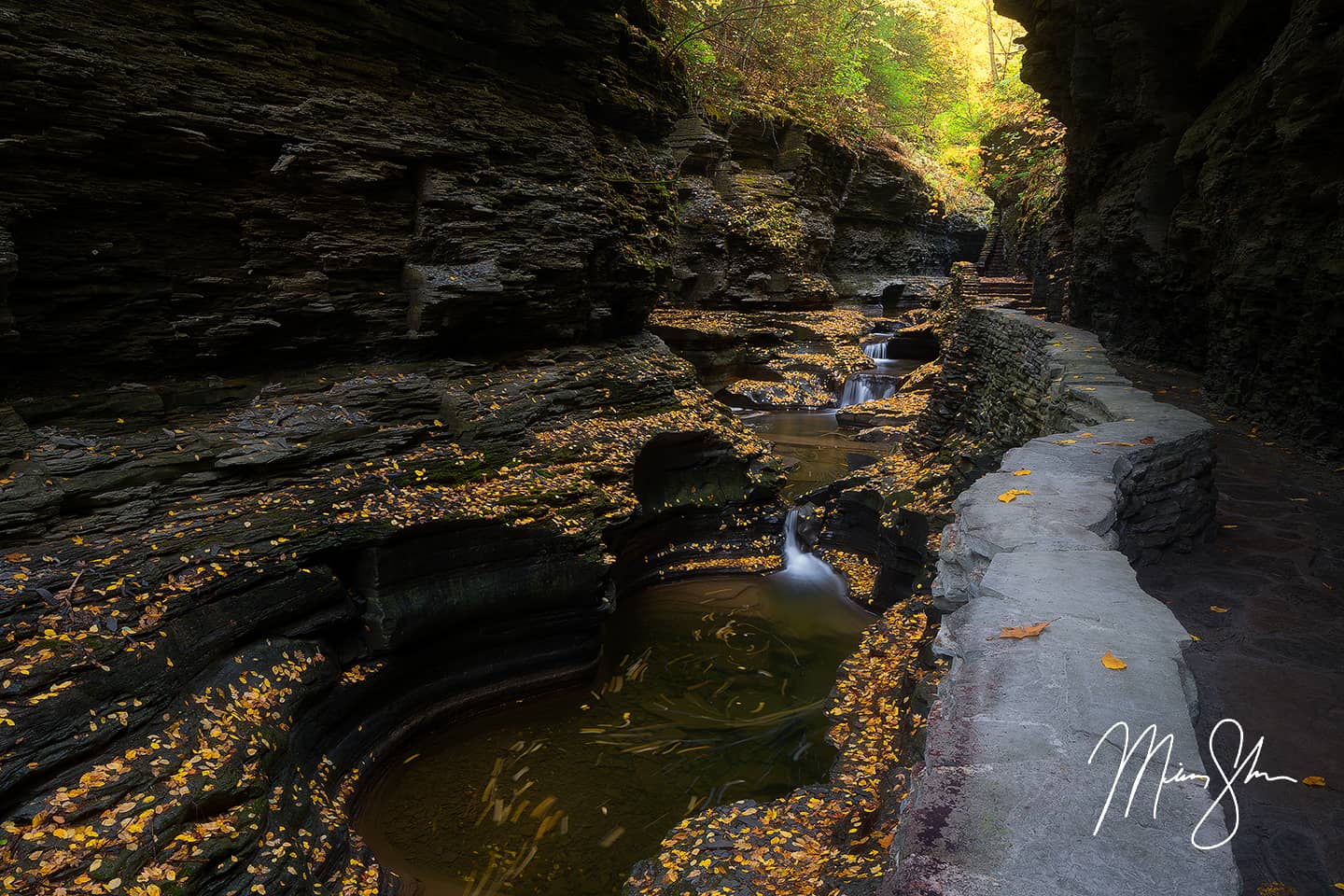 Open edition fine art print of Autumn in Spiral Gorge at Watkins Glen from Mickey Shannon Photography. Location: Watkins Glen State Park, NY