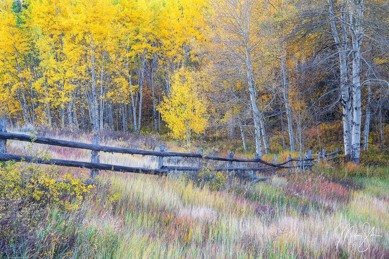 Autumn in the West - Snowmass Village, Colorado