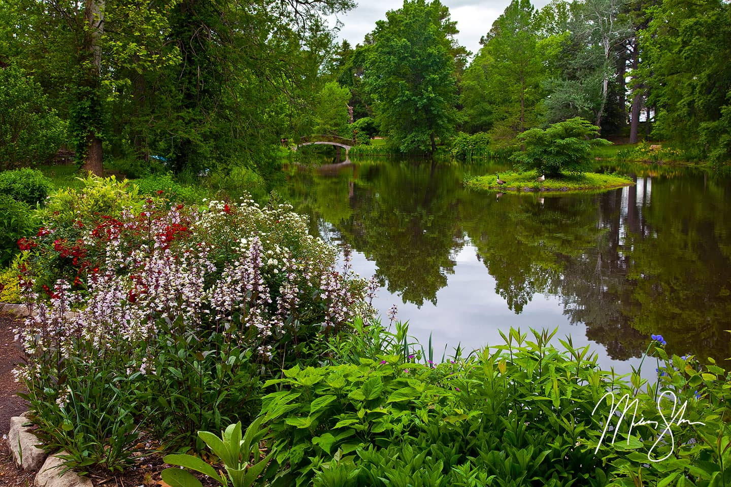 Open edition fine art print of Bartlett Arboretum Pond from Mickey Shannon Photography. Location: Bartlett Arboretum, Belle Plaine, Kansas