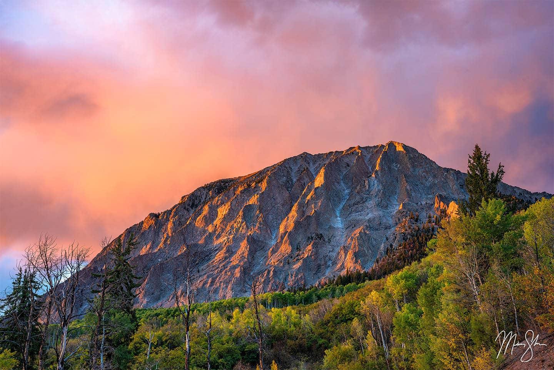 Blaze of Glory - Kebler Pass, Colorado