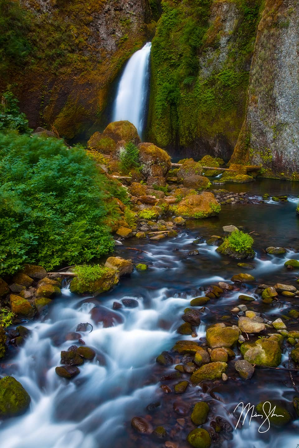 Cascades of Wahclella Falls - Wahclella Falls, Columbia River Gorge, Oregon, USA