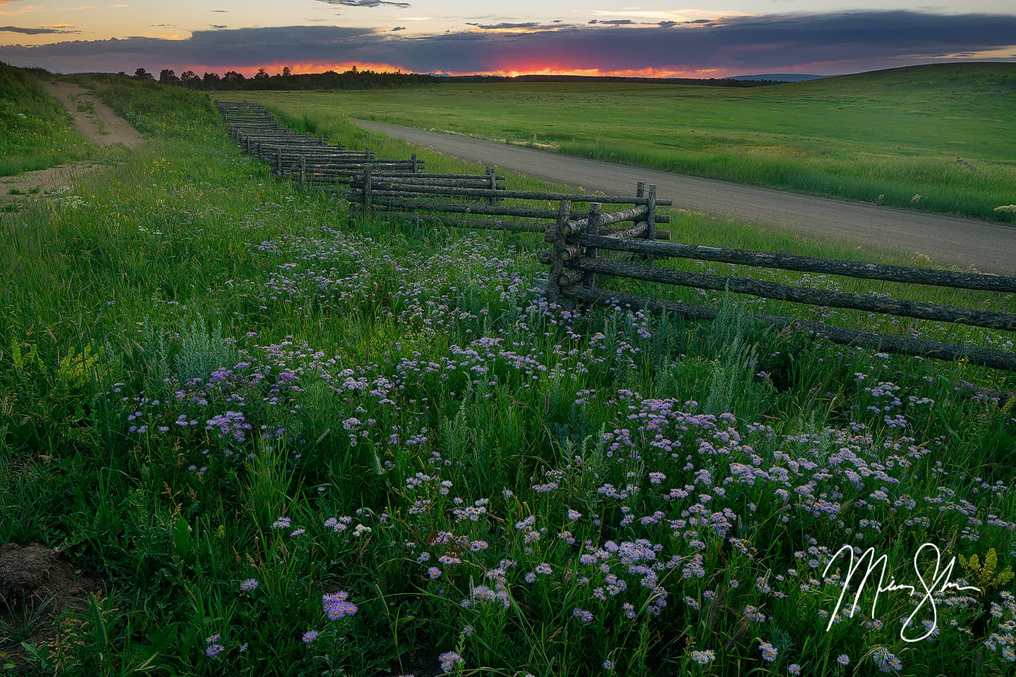 Open edition fine art print of Colorado Summer Sunset from Mickey Shannon Photography. Location: Last Dollar Road, Colorado