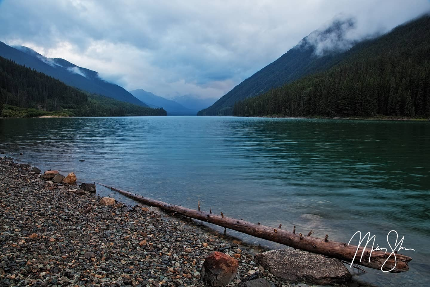 Duffey Lake Shoreline - Duffey Lake, British Columbia, Canada