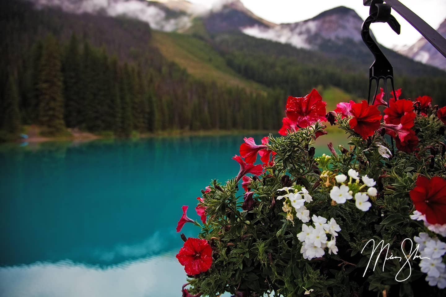 Emerald Beauty - Emerald Lake, Yoho National Park, British Columbia, Canada