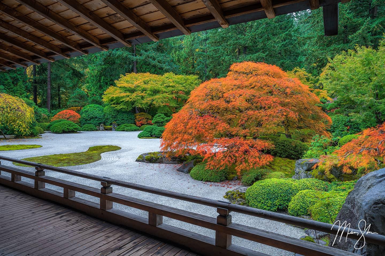 Fall at the Flat Garden - Portland Japanese Garden, Portland, Oregon