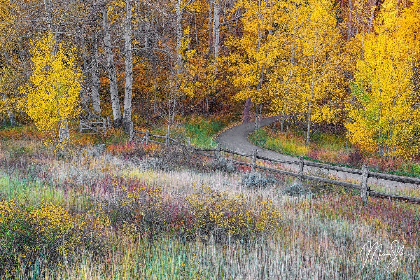 Autumn Pathways - Snowmass Village, Colorado