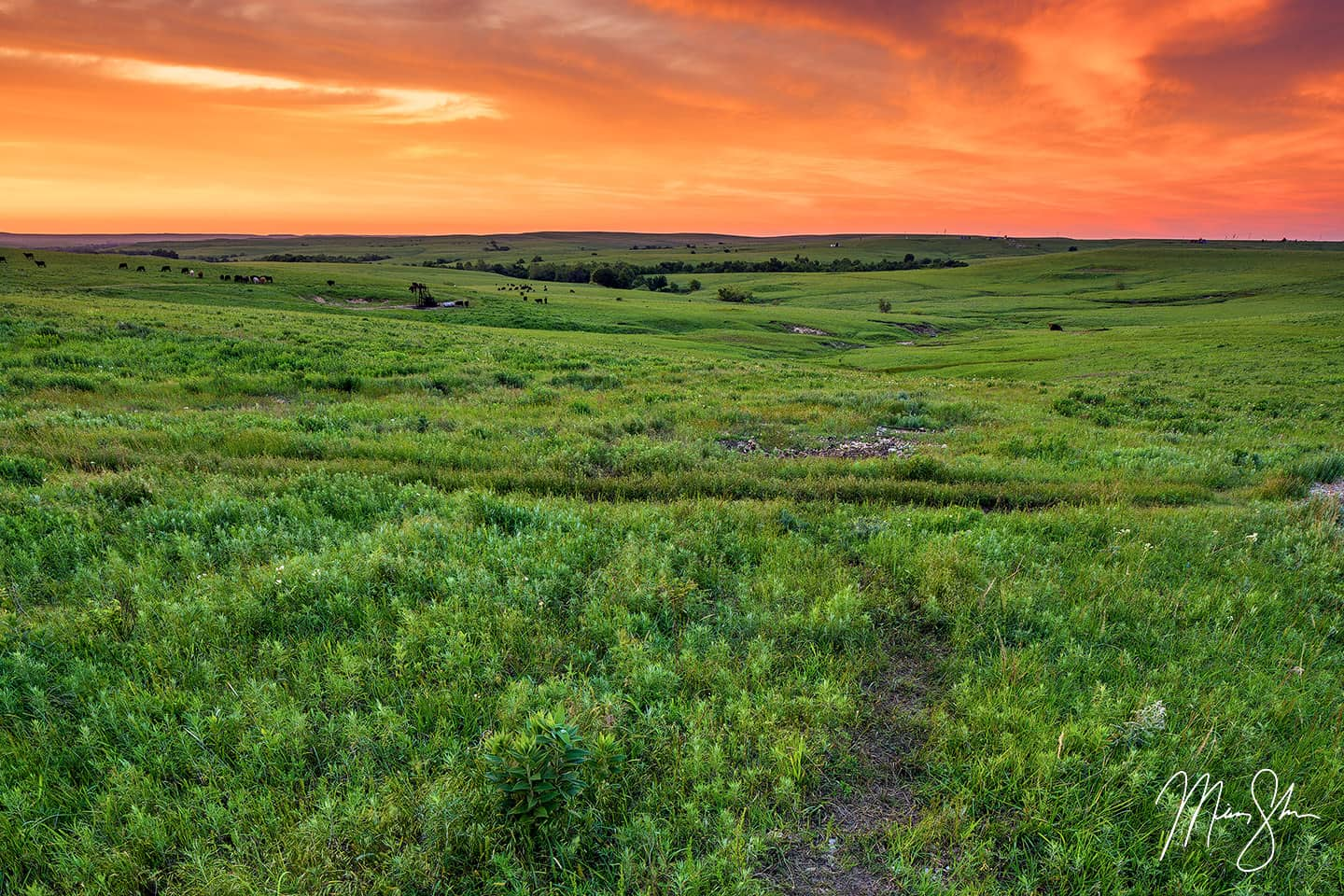 Flint Hills Sunset - Texaco Hill, The Flint Hills, Kansas