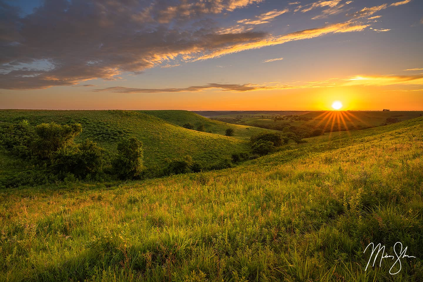 Golden Light in the Flint Hills - Near Manhattan, Kansas
