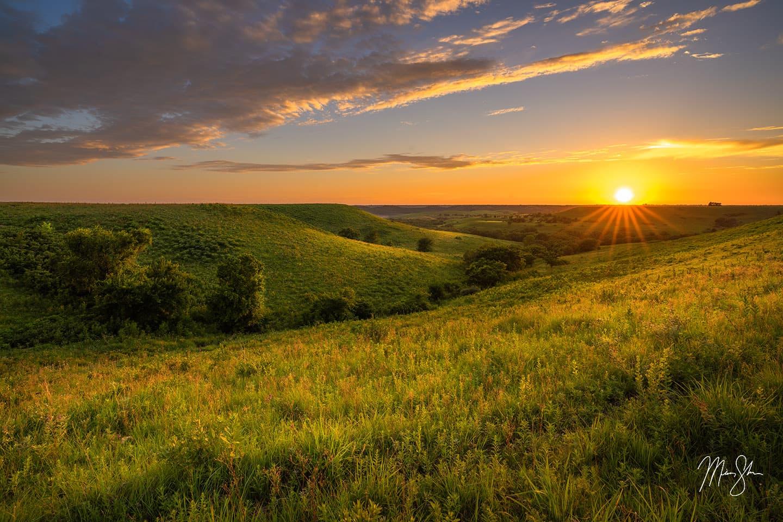 Kansas Photography: Sunflowers & Flint Hills