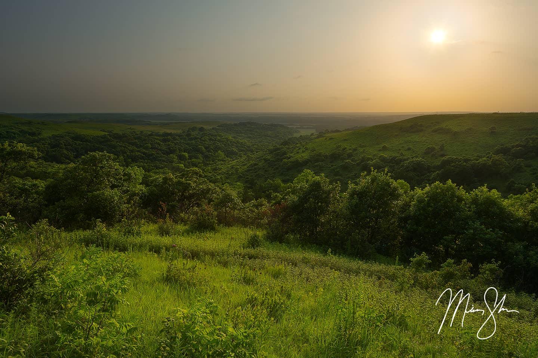 Konza Prairie View