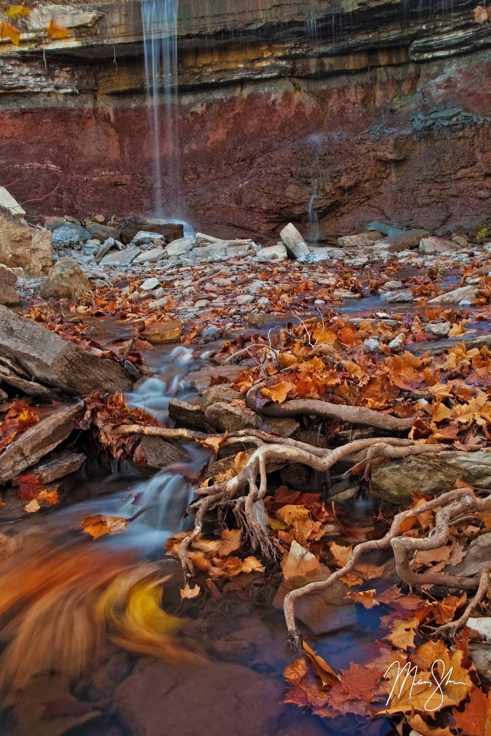 Leaves of Fallen Gold - Cowley Lake Waterfall, Kansas