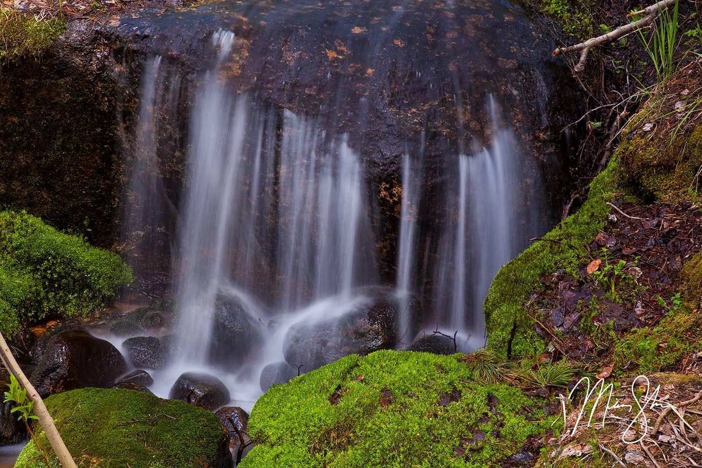 Micro Falls - Boulder Brook, Estes Park, Rocky Mountain National Park, Colorado