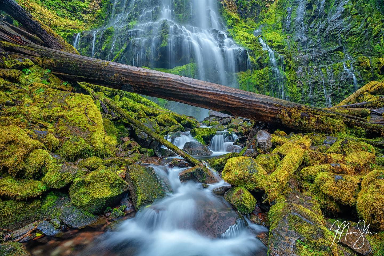 Proxy - Proxy Falls, Oregon