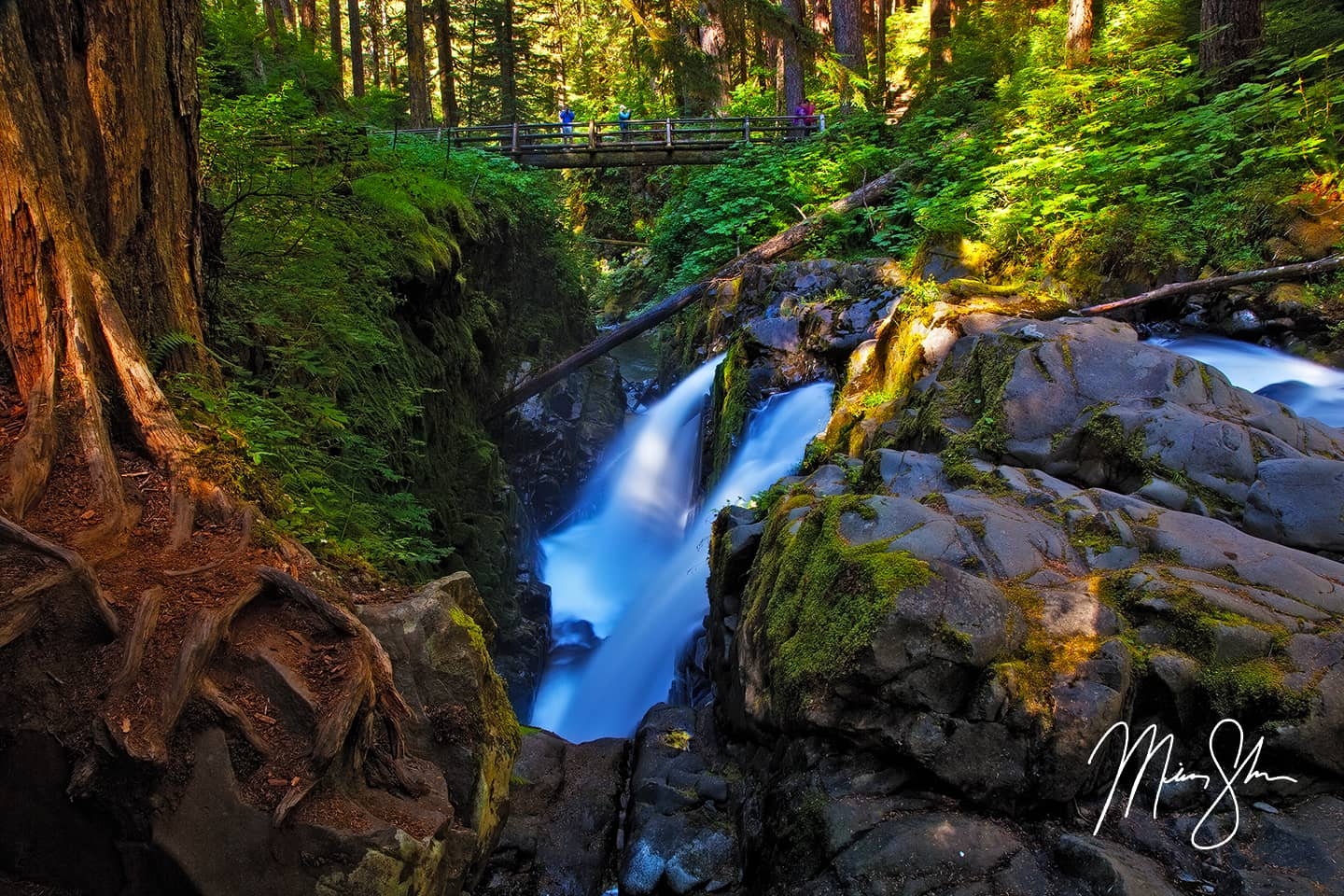 Open edition fine art print of Sol Duc Falls from Mickey Shannon Photography. Location: Sol Duc Falls, Olympic National Park, Washington, USA