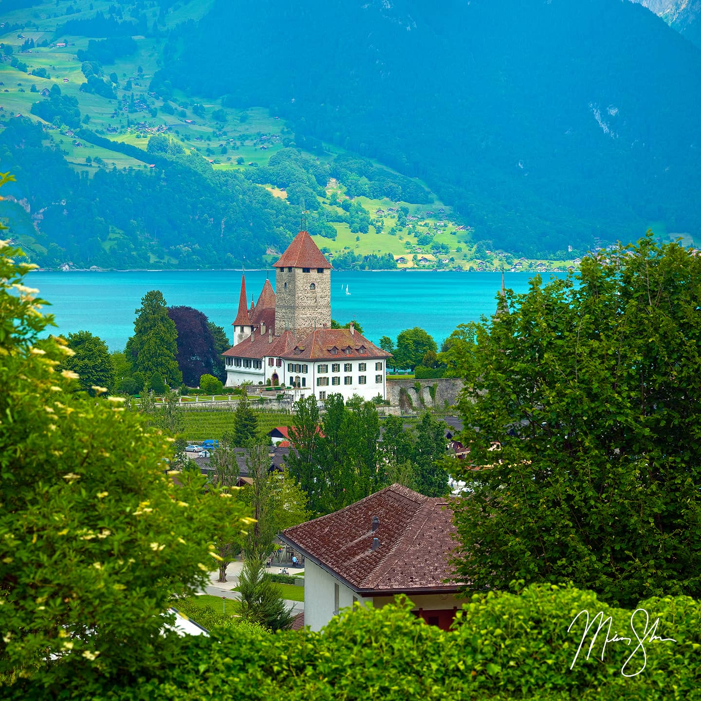 Spiez Castle - Spiez, Switzerland