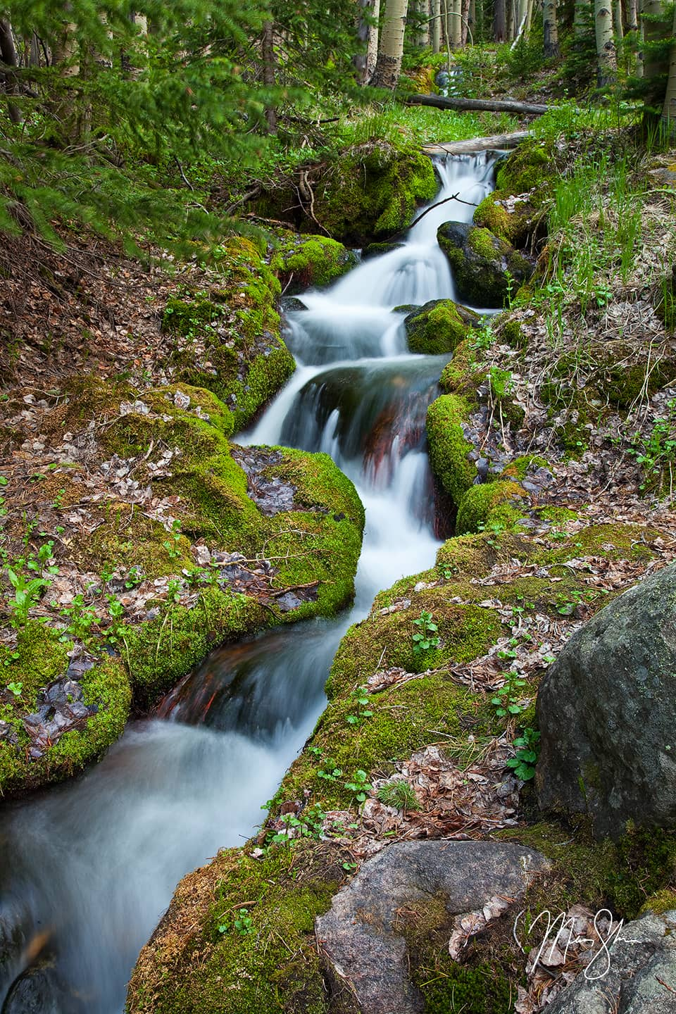 Springtime At Boulder Brook - Boulder Brook, Estes Park, Rocky Mountain National Park, Colorado