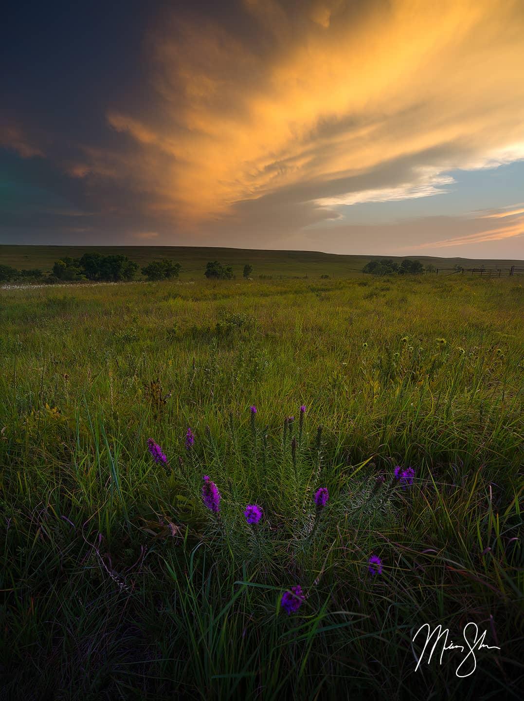 Tallgrass Prairie Summer Sunset - Tallgrass Prairie National Preserve, Flint Hills, Kansas