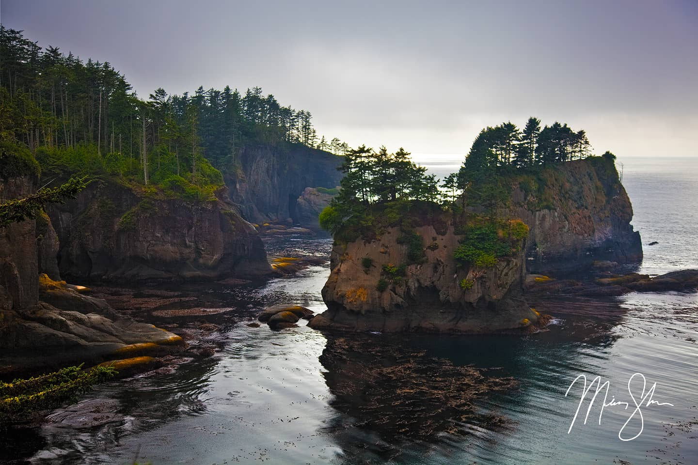 The Coast of Cape Flattery
