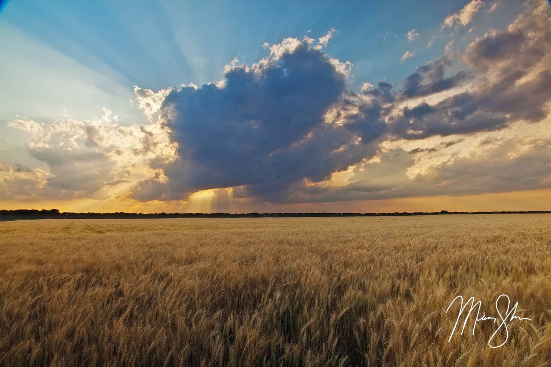 The Heartland of America - Near Wichita, Kansas