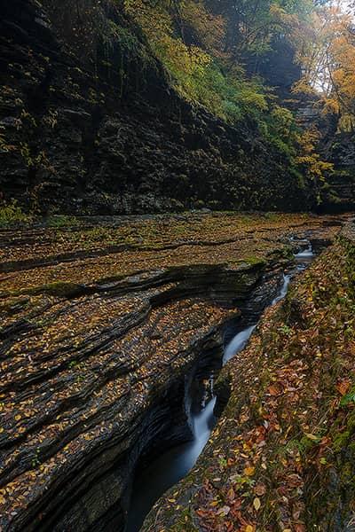 Autumn at the Narrows of Watkins Glen