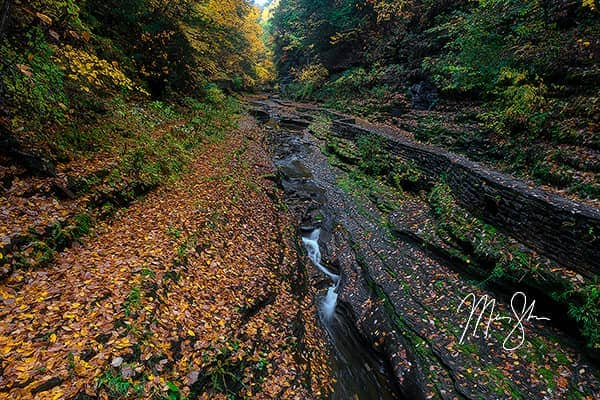 Autumn at Watkins Glen State Park