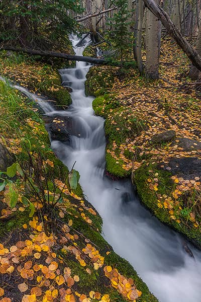 Autumn Cascades at the Boulder Brook