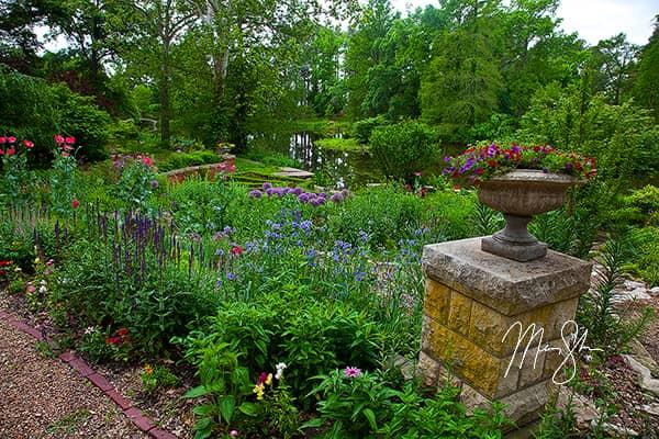 Bartlett Arboretum Flowers