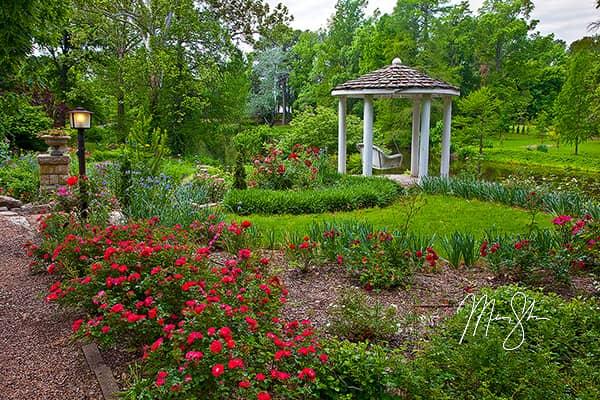 Bartlett Arboretum Photo Gallery