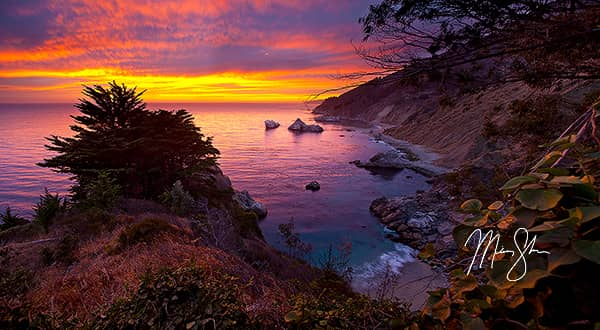 Big Sur Photo Gallery