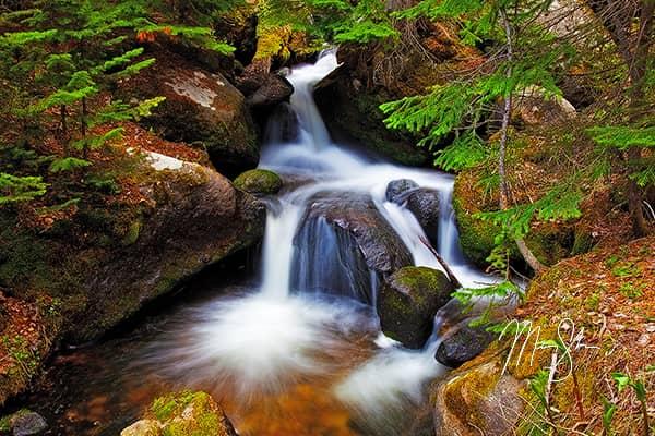 Boulder Brook Spring