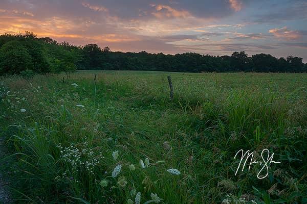 Bourbon County Sunset