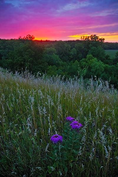 Colorful Kansas Sunset