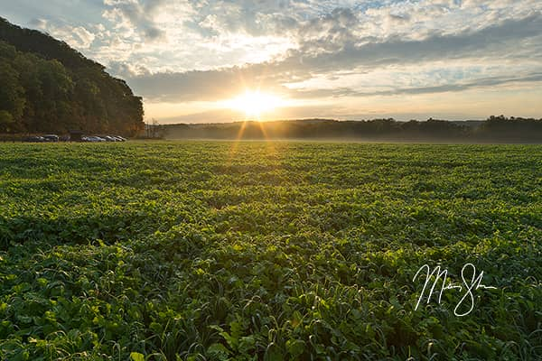 Cuyahoga Valley Sunrise