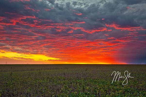 Just Your Average Kansas Sunset