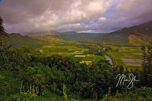 Magical Hanalei Valley