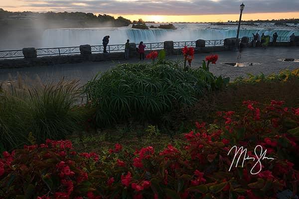 Niagara Falls Flowers