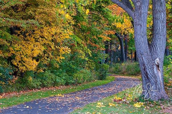 Niagara Parkway Autumn Trail