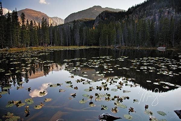 Nymph Lake Calm