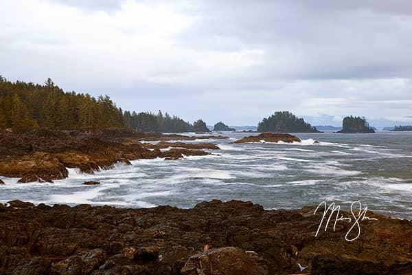 Pacific Rim Coastline