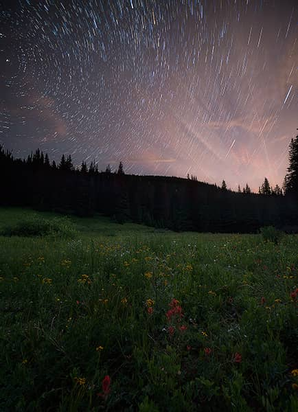 Shrine Pass Wildflower Star Trails
