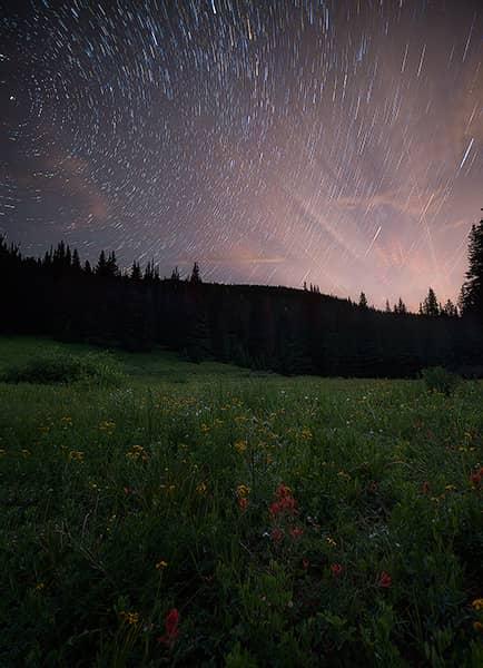 Shrine Pass Wildflower Star Trails