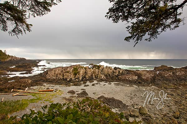 Vancouver Island Photo Gallery