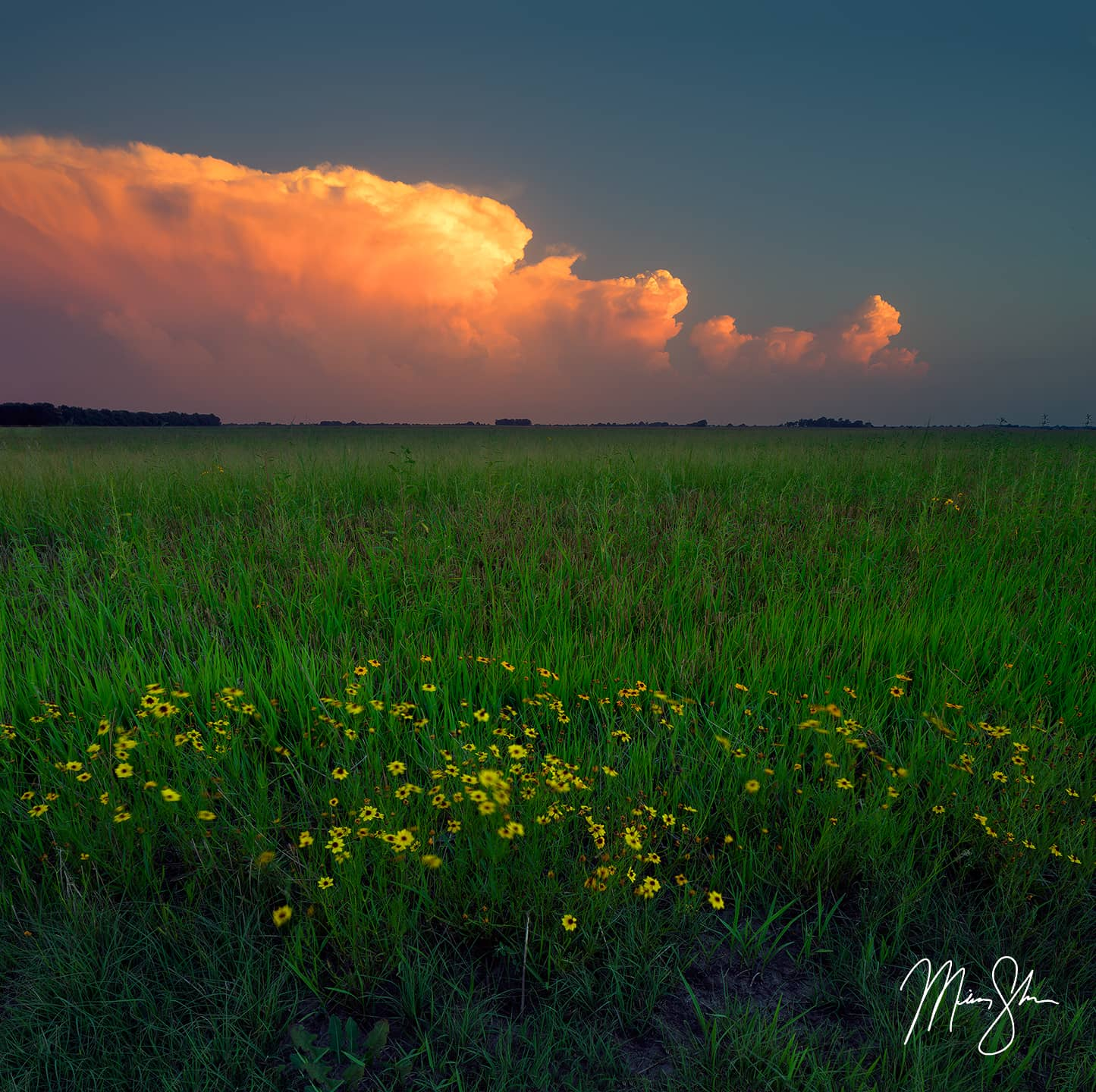 Thunderstorm Sunset - Wichita, KS