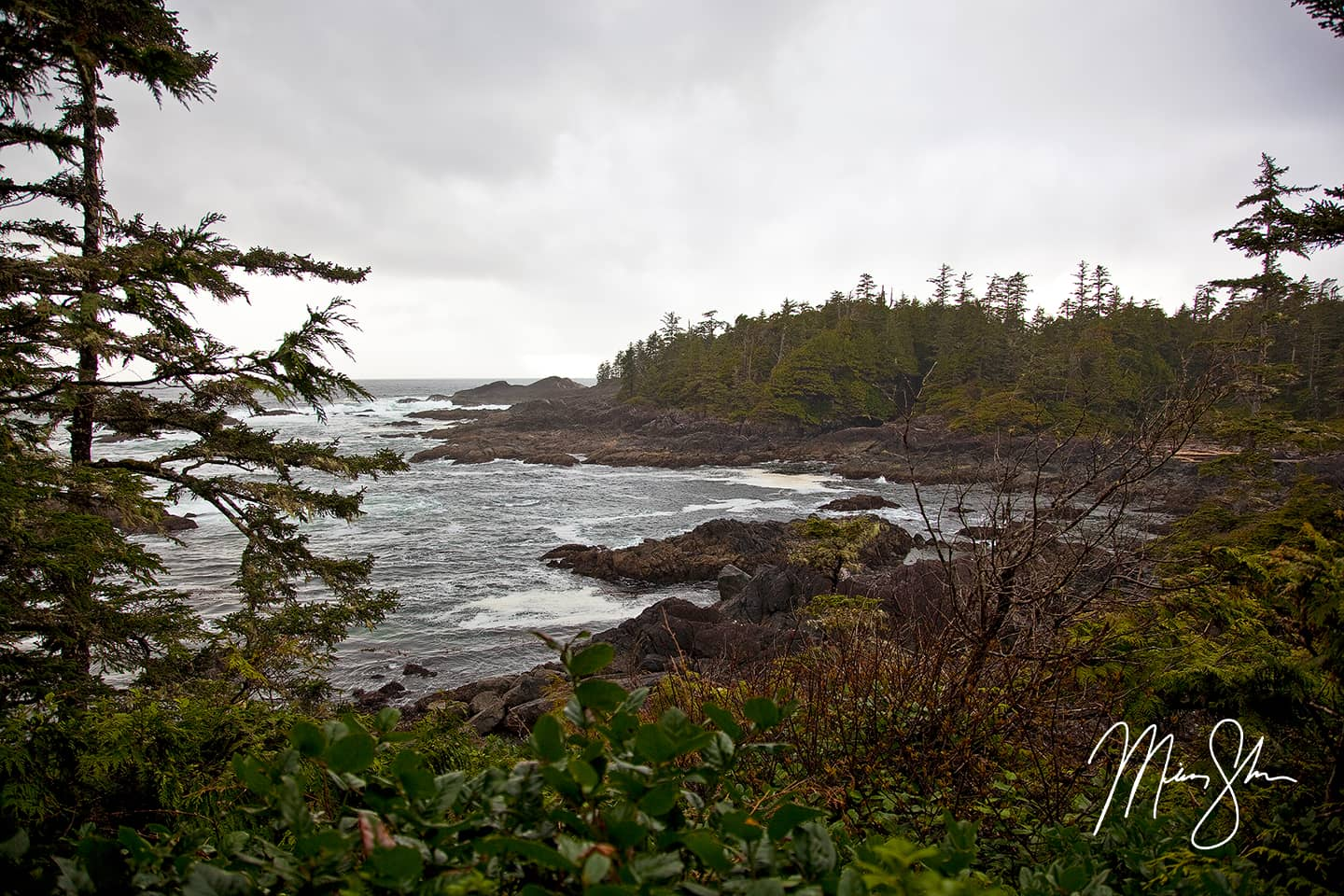 Wild Pacific Trail Coastline