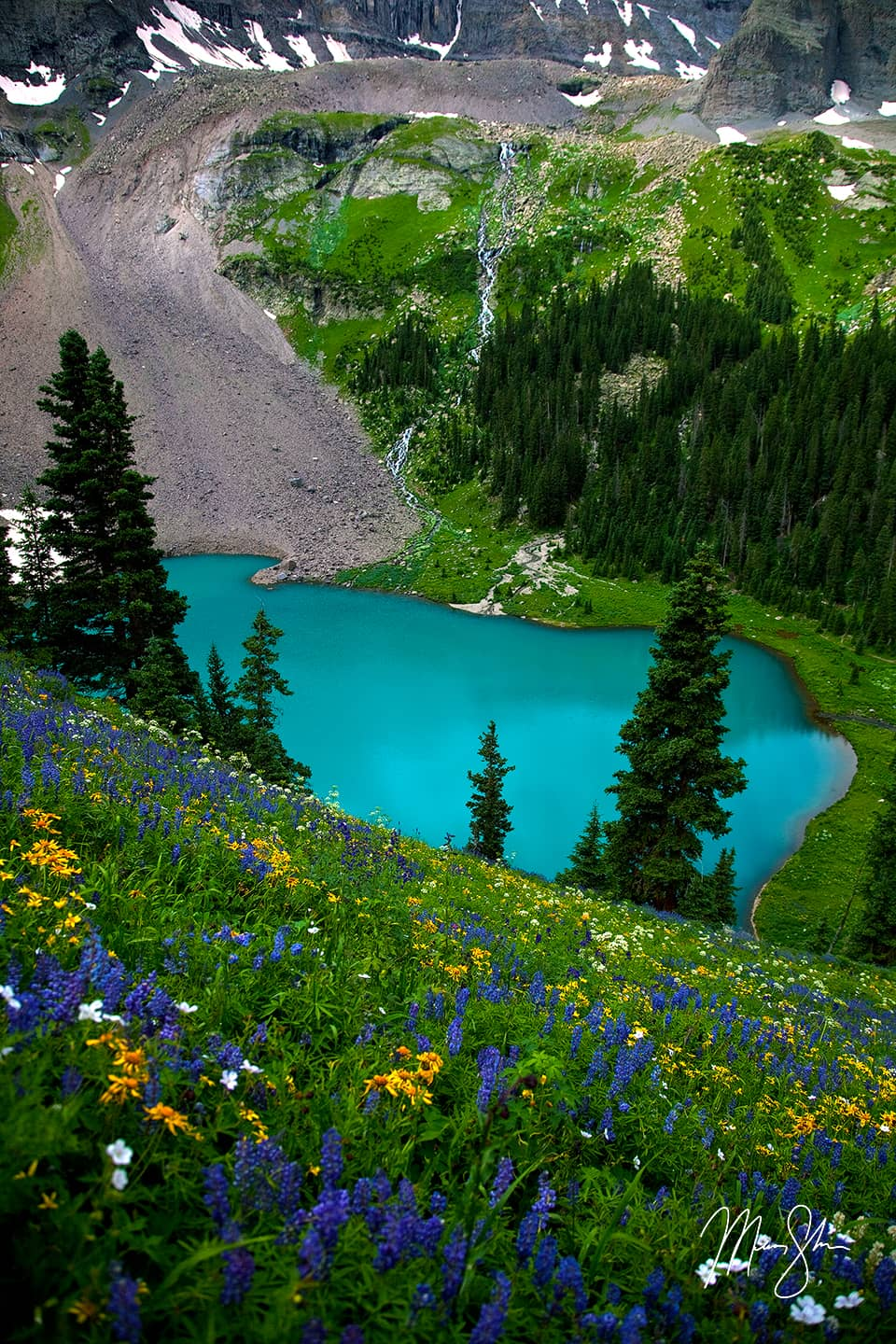 Wildflowers and Waterfalls at Blue Lake